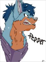 Pepper The Husky by KetchupClawz