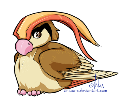 Day 8 - Pidgeot by Ankaa-C