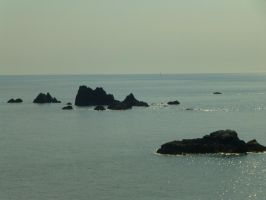 Lizard Point: View 23 by yaschaeffer
