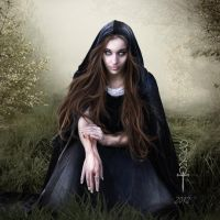 I offer my Kingdom by vampirekingdom