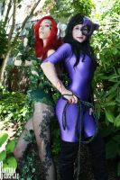 Gotham City Sirens 8 by CanteraImage