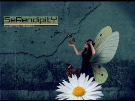 SeRendipity by ANC4DES