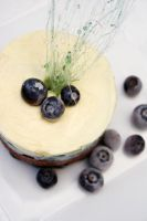 Blueberry Mousse 9 by laurenjacob