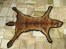 caracal rug SOLD by Minskin