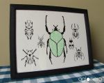 Beetle Collection Screen Print by puka23