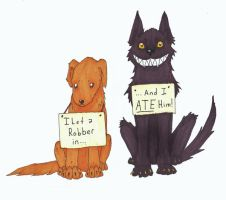 Dog Shaming with Sammy and Ella by Allison-beriyani