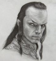 Lord Elrond by SimplyACat