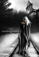 A long way by vampirekingdom