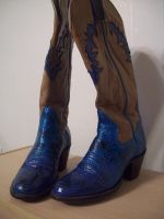 Hand Painted Cowboy Boots by Serene22