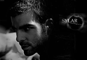 Wallpaper - Sylar by imaginangel