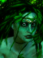 Dryad by moxiegraphix
