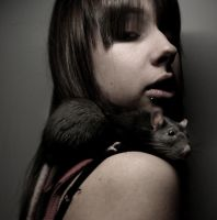 lover's rat by collien