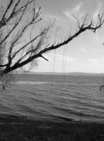 rope on the tree by the lake by CupcakeInsurgent