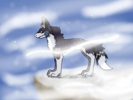 As the wind blows....... by WolfPawShadowClaw