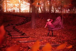 Fall to Winter in Red by shayne-gray
