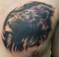 Lion Cover Up by Dripe