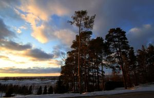 Winter Sky 022811 by GreyVolk