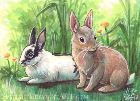 ACEO Buns by Sysirauta