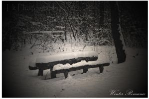 winter romance by Lk-Photography