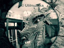 Eye Of The Dragon by UliInuzuka