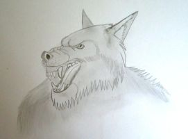 Werwolf by Chequer