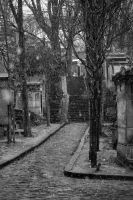 Snow on Pere Lachaise 5 by MadameOreille