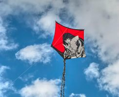 Southsea Kite Weekend 15 by Bazz-photography
