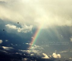 rainbows, blue skies, by jessmarie