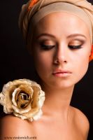 Golden Rose by rusinovich