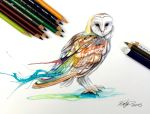 207- Barn Owl by Lucky978