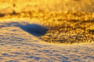 yin and yang snow and gold by Jorapache