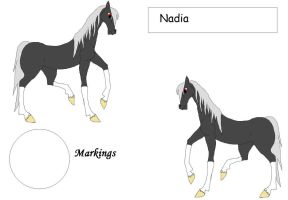 SDS Nadia by Horses-Echo