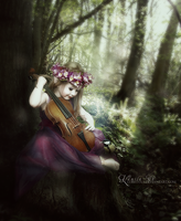 Music from forest by lorettaa