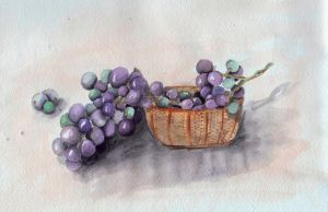grapes by feafox92