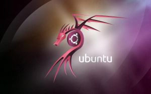 Ubuntu dragon wallpaper 2010 by petrsimcik