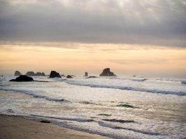 View from Sea Lion Rocks at Cannon Beach by ahley