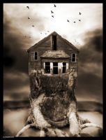 The House by 3dueces