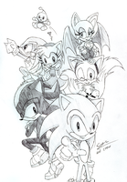 Generic Sonic Picture by rhi-mix