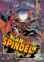 The Man-Spider by Zaider