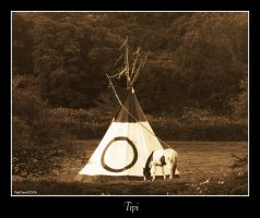 Tipi by mad1dave