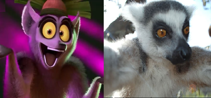 King julien in real life by Dandinofthebluefire