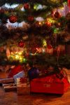 Christmas Tree by FunkyBah