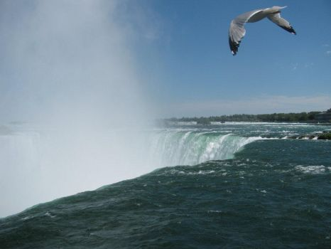 Fly Over the Falls by ariisu9