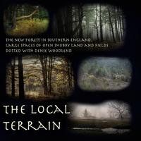 The local terrain by ModMii