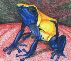 Citronella Dyeing Poison Frog by Narzaria