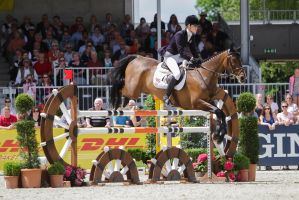 3DE Show Jumping Phase Stock 9 by LuDa-Stock
