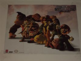 MY Super Smash Bros. Brawl Poster Side 1 Out Of 2 by Zelda1987