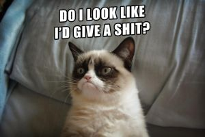 Grumpy Cat doesn't care at all by Cthulhu1976