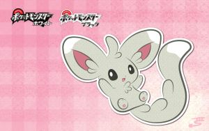 Minccino Wallpaper by Marki-san-Design
