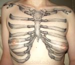 Skeletal Structure - Ribs by ShadowLady666